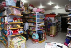 Pet Shop de Praia Grande Contrata Profissionais